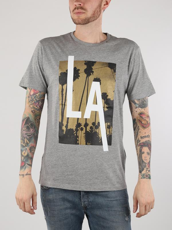 Tričko Replay M3473 T-Shirts Šedá