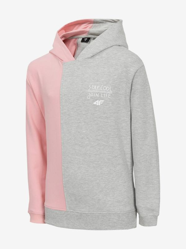 Mikina 4F Jbld203 Sweatshirt Barevná