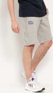 RUSSELL ATHLETIC Arch Logo Shorts melange šedé